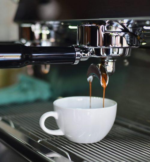 beverage-business-cafeteria-caffeine-302894